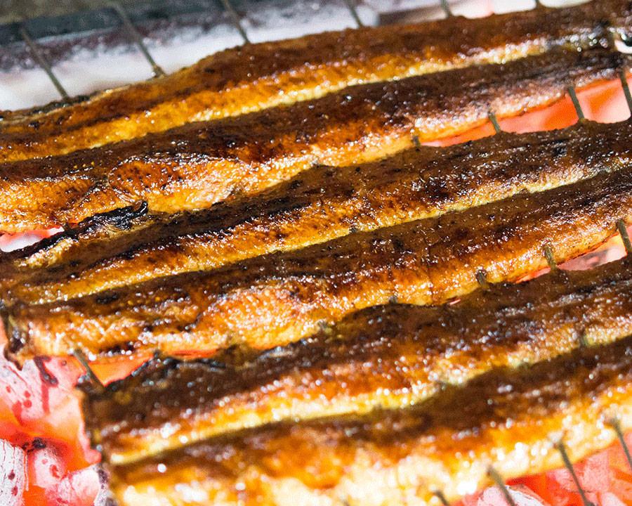 記念日やお誕生日に鰻料理を堪能するなら[炭焼 うな富士 有楽町店]へ